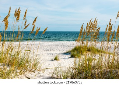 A scene on the Gulf Coast of Alabama.