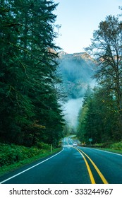 scene of road to mt Baker  on the morning,Washington,USA.