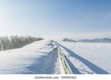 The scenery after the snow/A snow field-13