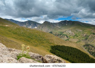 Scenery along the highway to the summit of Mount Evans in Colorado.