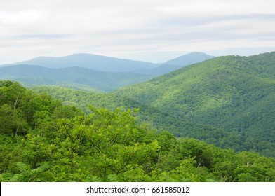 Scenery along the Skyline Drive in Shenandoah National Park in the Blue Ridge Mountains, Virginia