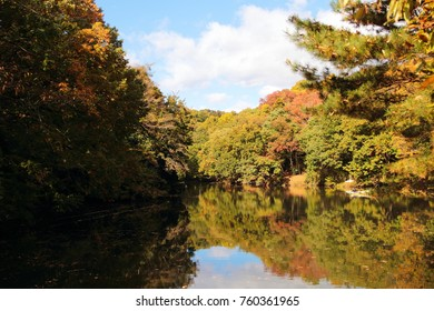 Scenery of autumn leaves reflected on the lake surface