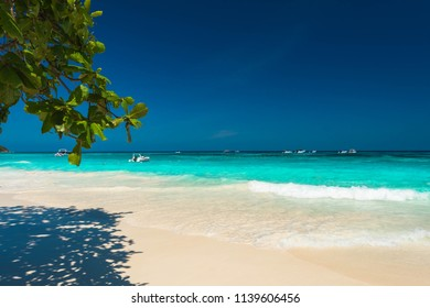 Scenery beach with gentle wave at Surin Island in summer, Clean and bright tropical sea and beach with tree branch, Nice landscape with blue ocean and wonderful island for the best relax