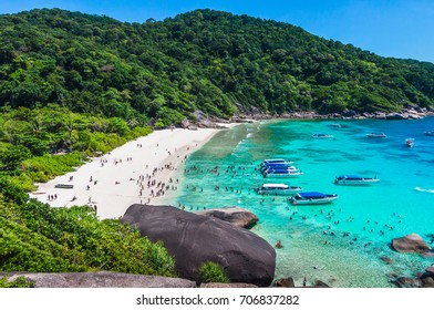 Scenery of beautiful destination beach, Group of speed boats parked on sea beach waiting for tourists, Top view from hill top, Similan island, Phangnga, Travel in Thailand