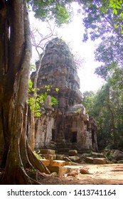 The scenery beautiful tree and old castle of history between thai and combodia borders
