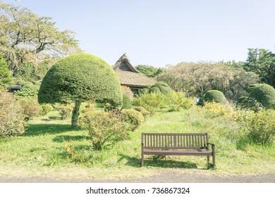 Scenery with bench / Chichibunomiya Memorial Park