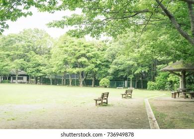 Scenery with bench / Kakita River Park