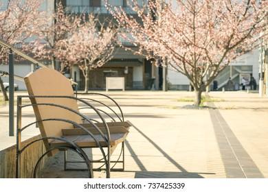 Scenery with bench / Nagisa Small Park