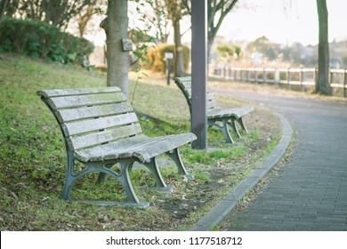 Scenery with bench / Winter Kadoike Park