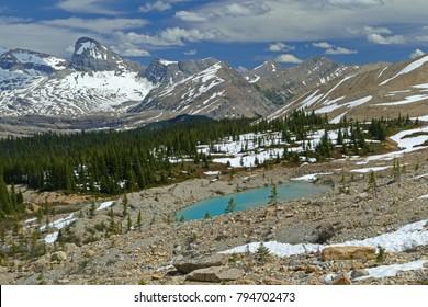 Scenery of Canadian Rockies, Iceline Trail near Takakkaw Falls, Yoho National Park, Canada