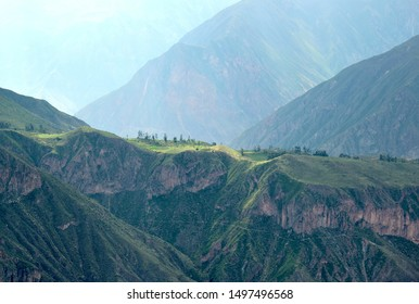 Scenery in the Colca Canyon  near the small village of Cabanaconde in the Arequipa region, Peru.