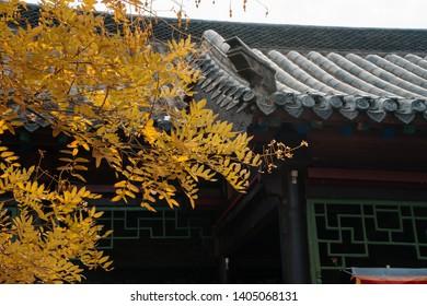 Scenery of Daming Lake, Jinan, Shandong