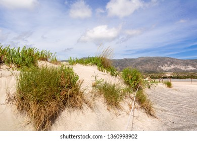 Scenery of desert at the reserve zone with plants growing on sand dunes on Elafonisi beach, Greece