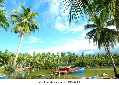 Scenery of a fishing village with many palm trees