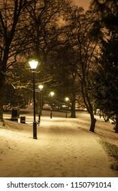 Scenery of Gothenburg park at winter night