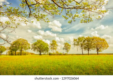 Scenery with grass and trees, blue sky and white clouds. Colorshift by intent.