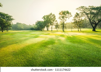 Scenery green golf and meadow with sunbeam in morning, Wonderful sunbeam at the natural park, Scenery fairway with trees and green grass field