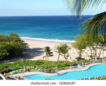 scenery in Hawaii Big island