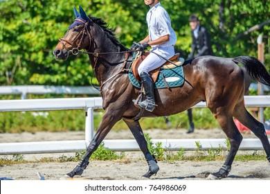 Scenery of the horseback riding