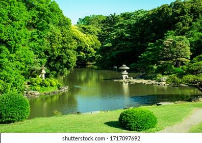 Scenery of Japanese garden in Shinjuku Gyoen, Tokyo Japan