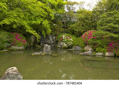 Scenery of the Jonangu shrine with a very large Japanese garden, Kyoto, Japan : May 4, 2011