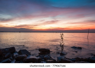 scenery nature background beautiful color evening sky with plants in sea. image for seascape, twilght, outdoor, sunlight concept
