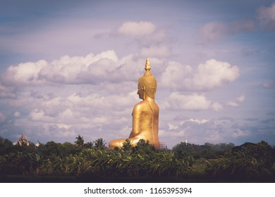 Scenery of Rice field and Big Golden Buddha statue at Wat Muang Temple landmark of angthong province, Thailand