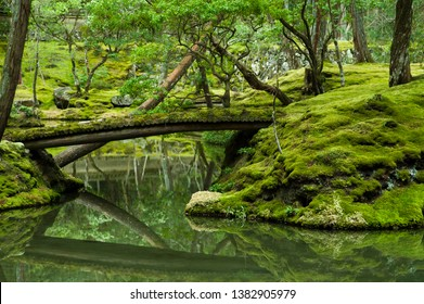 """Scenery of Saihoji temple in Kyoto,Japan. Saihoji is a World Heritage Site. This temple is called by the pet name of """"the moss temple""""."""