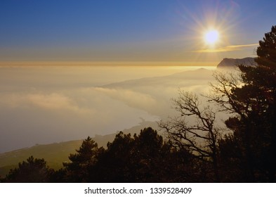 Scenery with shining sun in the blue sky over the misty Black Sea coast in Crimea at sunset in January. Clouds and fog over the Yalta seashore. Silhouette of branches.