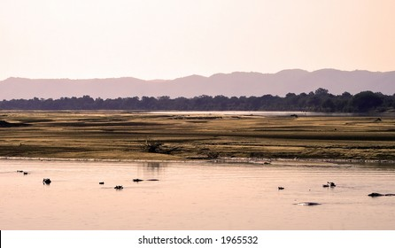 Scenery of south luangwa national park zambia