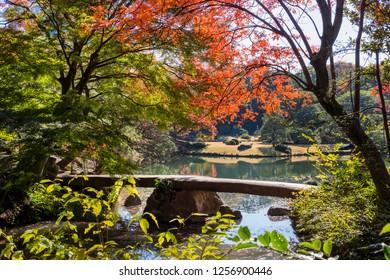 "Scenery of the stone bridge of ""Rikugi-en Garden"". The name of the bridge is ""Togetsukyo Bridge"". Bunkyo, Tokyo, Japan."