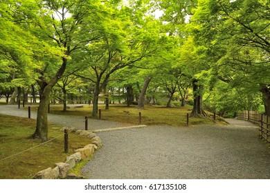 Scenery of Tofuku-ji Temple of the tender green, Kyoto, Japan : May 3, 2011