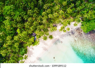 Scenery Tropical white sand bech with coconut palm tree background idyllic turquoise sea aerial view