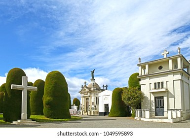 Scenes at Cemetery of Punta Arenas, a public cemetery of the city of Punta Arenas, Chile.   Established in 1894, is one of the main attractions of the city .