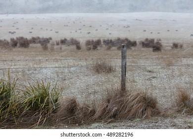 Scenes of rural Tasmania during a snow falling