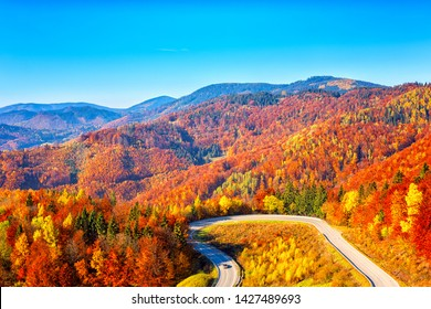 Scenic alpine winding road in autumn mountains with colorful trees and blue sky, outdoor travel background, Narodny park Slovensky Raj (National park Slovak paradise), Slovakia (Slovensko)