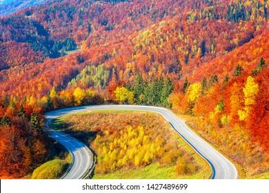 Scenic alpine winding road in autumn mountains with colorful trees, outdoor travel background, Narodny park Slovensky Raj (National park Slovak paradise), Slovakia (Slovensko)