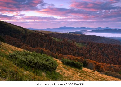 scenic autumn morning dawn, fabulous Carpathian hill covered forest on background valley in fog and far mountains on horizon, amazing sunrise nature image, Ukraine, Europe