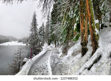 Scenic autumn view with the first snow on a dirt wet road in the mountains, trees and forest in the snow and hoarfrost on the background of an overcast sky