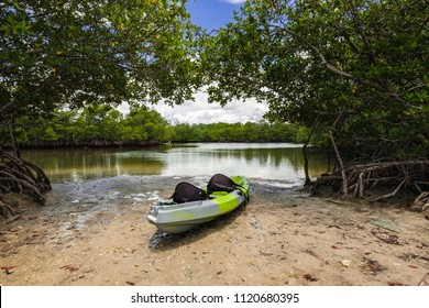 Scenic bay view of the mangrove swamp with a kayak on shore along the bay in Oleta River State Park in North Miami Beach.