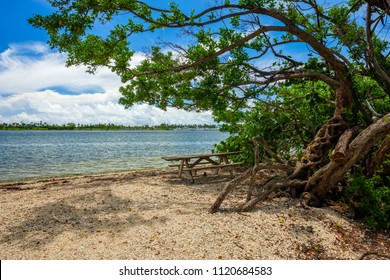 Scenic bay view from Oleta River State Park in North Miami Beach.