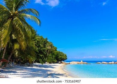 Scenic beach with trees, palm, rocks and blue sea against sky in Lang Tengah island, Malaysia