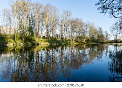 scenic and beautiful reflections of trees and clouds in water of the river