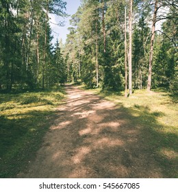 scenic and beautiful tourism trail in the woods near river. latvia. - instant vintage square photo