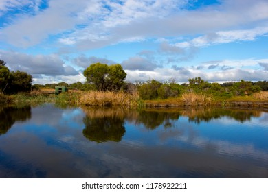 Scenic  beautiful tranquil  view  of the lake with  its secluded landscape from  the cycle way  at the Big Swamp Wetlands  in Bunbury Western Australia on a fine summer day.