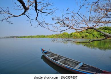 Scenic beauty of backwaters in Kochi.