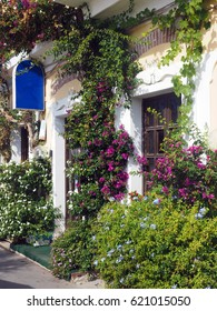 scenic building front with flowers Monterosso Cinque Terre Italy Europe