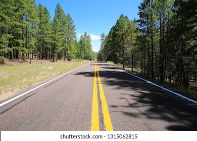Scenic byway Route 87 in Coconino National Forest, Arizona, USA
