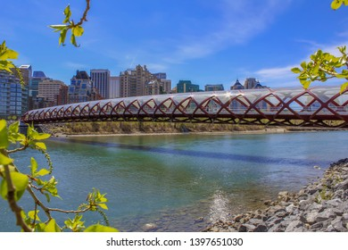 Scenic Calgary Views By The River
