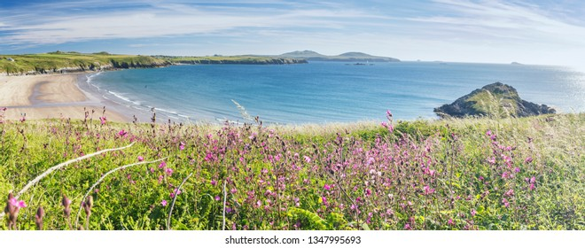 Scenic cliffs and calm blue sea of St David's Peninsula at bright summer day. Wide panoramic view of Pembrokeshire Coast Nationa Park in west Wales,UK